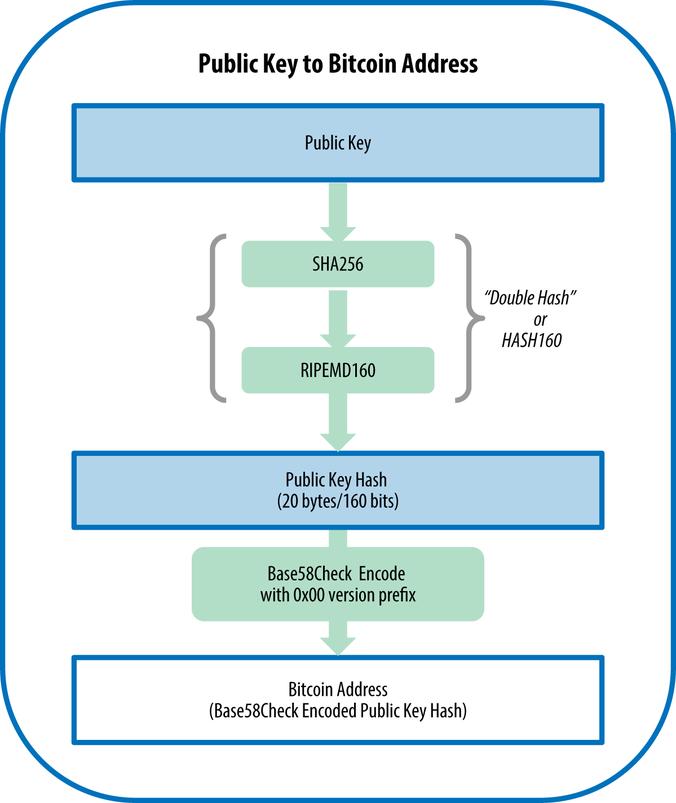 Bitcoin-Adresse aus öffentlichem Schlüssel berechnen